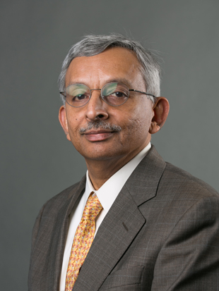 Headshot of Vadake Narayanan