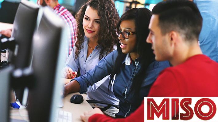 Management Information Systems Organization MISO