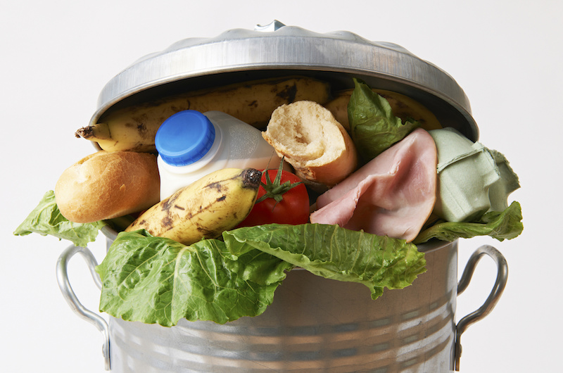 Food from the Trash