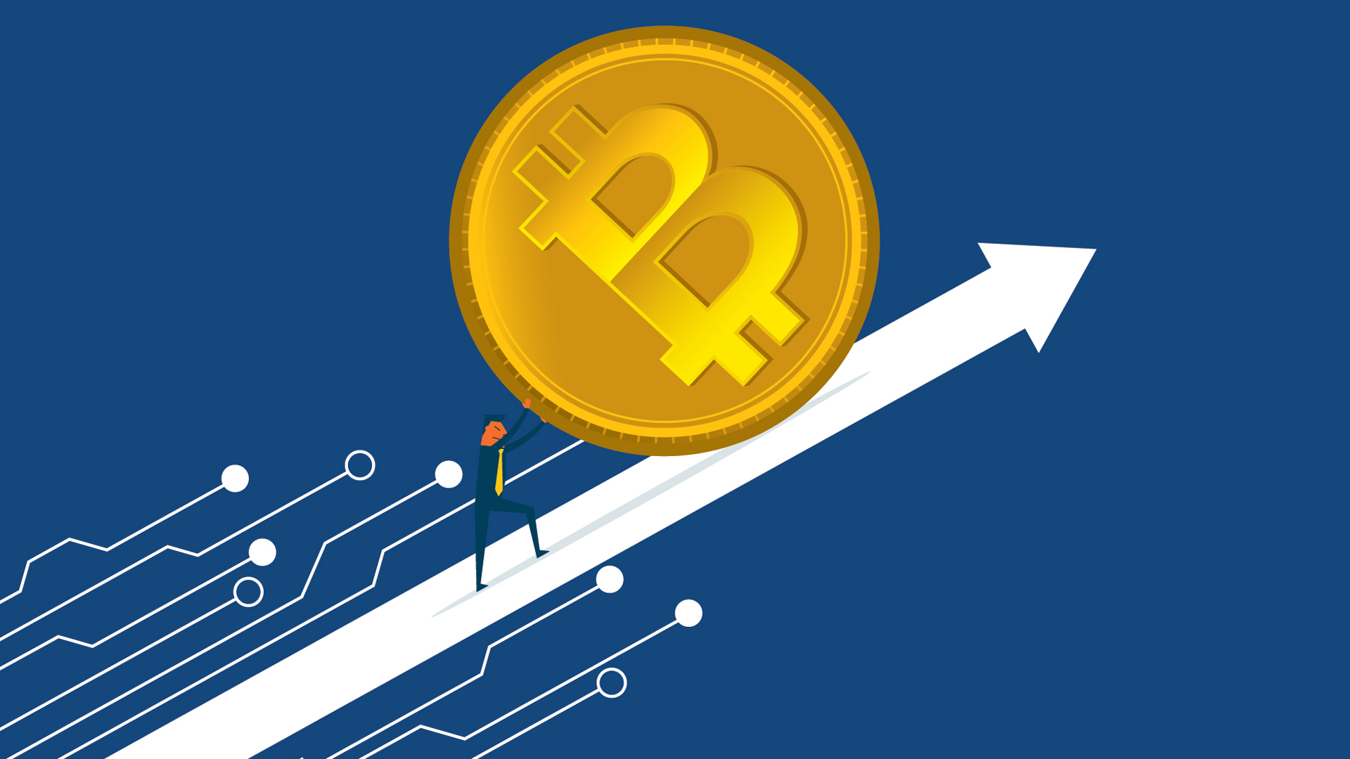 Bitcoin Price Index — Real-time Bitcoin Price Charts