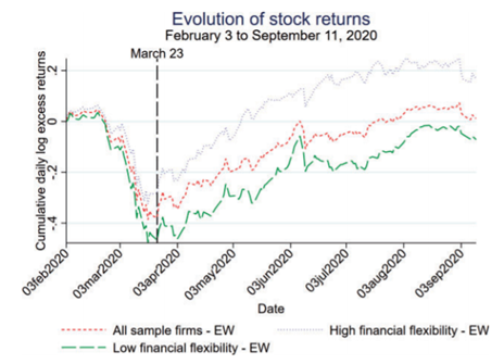 Returns over time for firms of varying flexibility